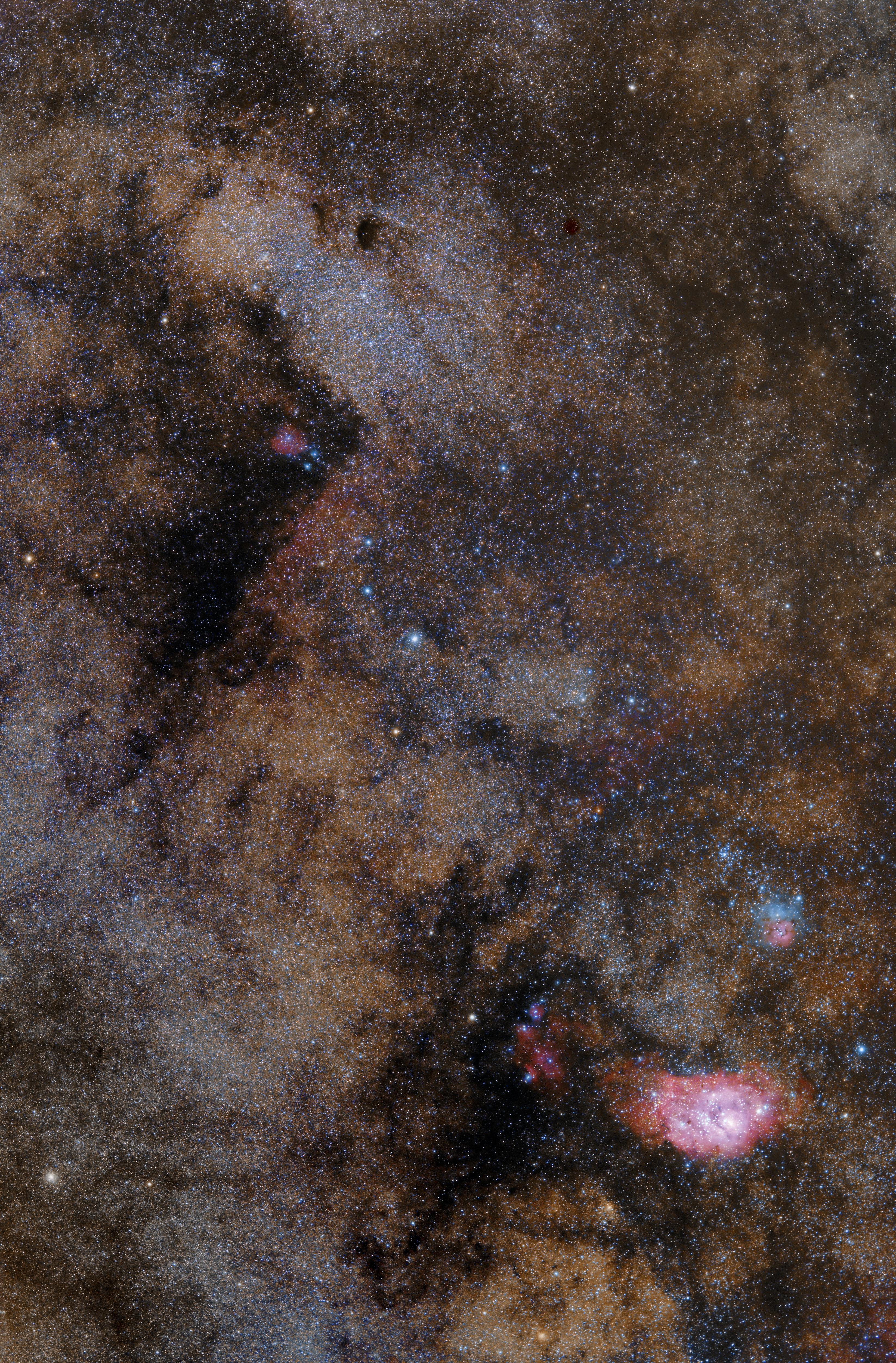 M8, M21, M20 widefield
