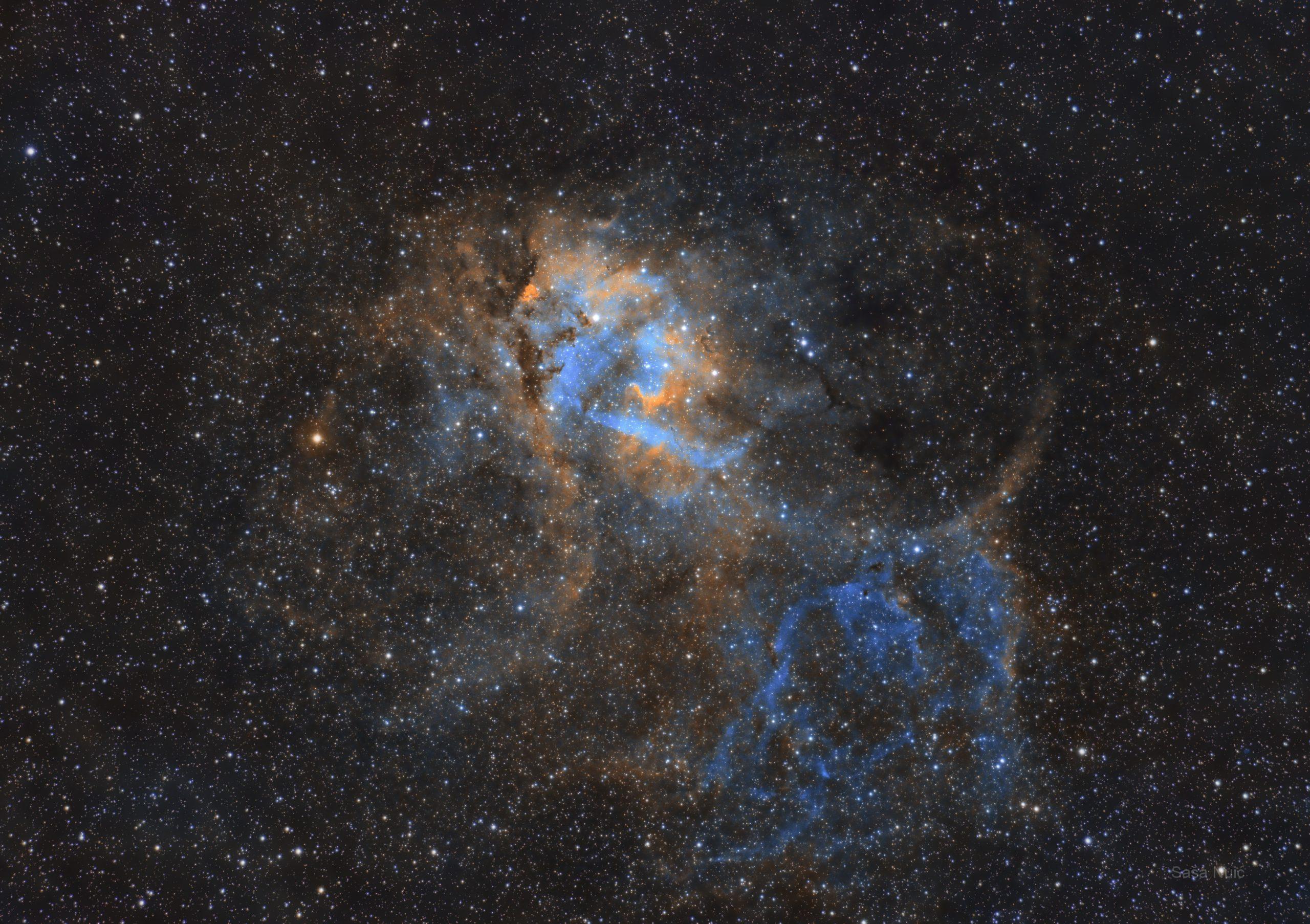 Hakuna Matata Carpe Diem (Sh2 132 – Maglica lav)